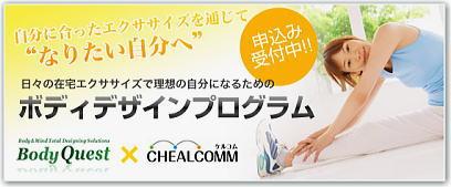 Chealcomm2_2