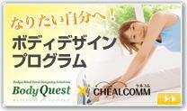 Chealcomm3